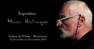 Exposition de Marc Halingre